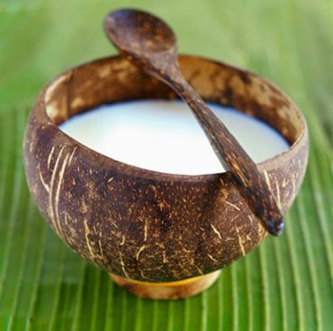Uống dầu dừa giúp giảm cân hiệu quả