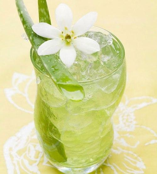 Uống nước nha đam có giảm cân không ? Cách làm nước ép nha đam giảm cân
