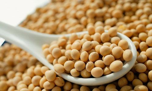 Những thực phẩm giúp giảm mỡ bụng hiệu quả không ngờ đến 3